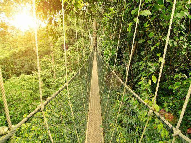 منطقه حفاظت شده Semenggoh هنگام سفر به مالزی در ماه رمضان