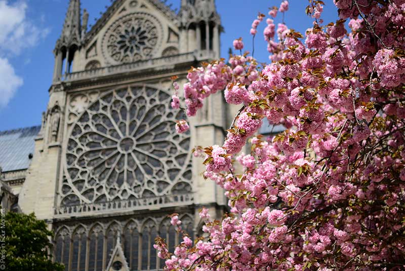 چه زمانی به پاریس برویم ؟
