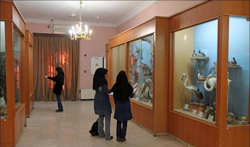 موزه حیات وحش هفت چنار در تهران