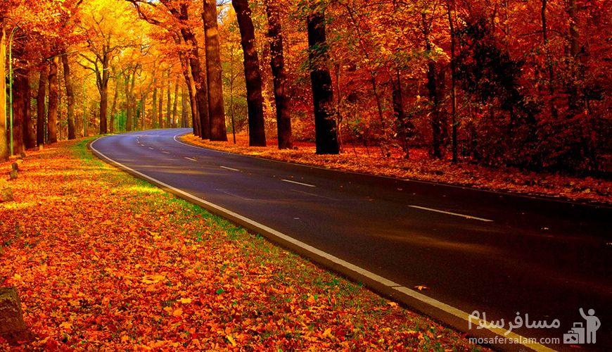 جاده چالوس در پاییز