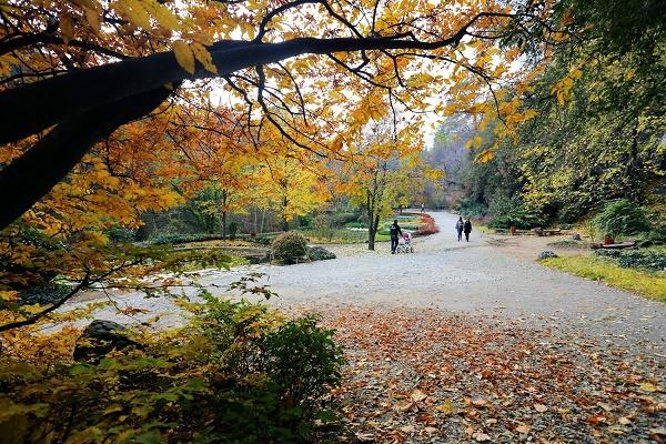 چرا در پاییز و زمستان به مادرید برویم ؟