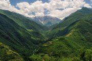 جنگل سه هزار تنکابن ، جنگلی بکر و زیبا