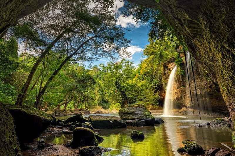 در مسافرت به مالزی از پارک ملی باکو غافل نشوید!