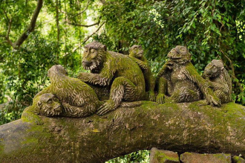 جنگل میمون یوبود از مناطق ديدني بالي