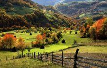 راهنمای سفر به صربستان و بلگراد (بدون ویزا) + معرفی جاهای دیدنی و عکس