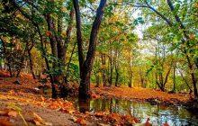 پارک چیتگر تهران کجاست ؟ + آدرس و مشخصات دریاچه چیتگر +عکس