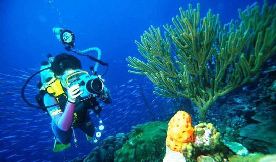 جاهای دیدنی لاس پالماس ، جزایر قناری کجاست ؟